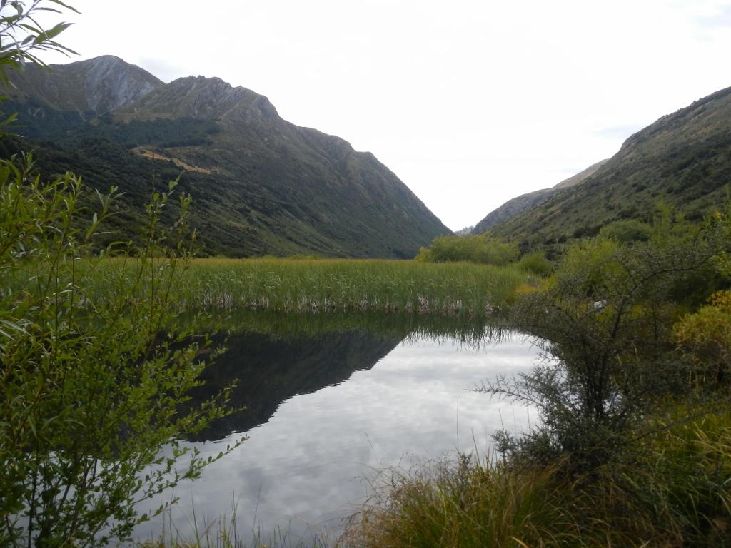 01032014_NZ_DeQueenstownAWanaka_LacDispute_01 (1024x768)