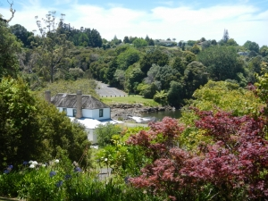 02122013_NZ_BoI_Kerikeri_06 (1024x768)