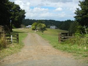 03012014_NZ_WhangareiToDargaville_01 (1024x768)