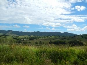 03012014_NZ_WhangareiToDargaville_04 (1024x768)