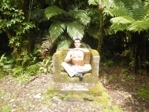 03032014_NZ_FoxGlacier_ChaletLookout_04 (1024x768)