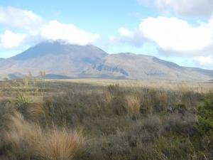 05012014_NZ_EnRoutePourTongariro_06 (1024x768)