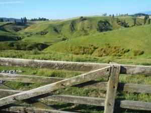 05012014_NZ_EnRoutePourTongariro_09 (1024x768)
