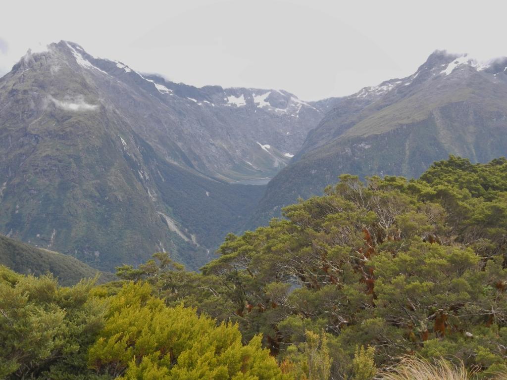27022014_NZ_Fiordland_KeySummit_04 (1024x768)