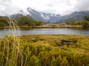 27022014_NZ_Fiordland_KeySummit_02 (1024x768)