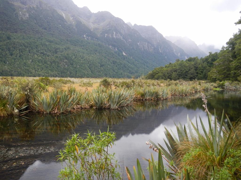 27022014_NZ_Fiordland_MirrorLake_04 (1024x768)